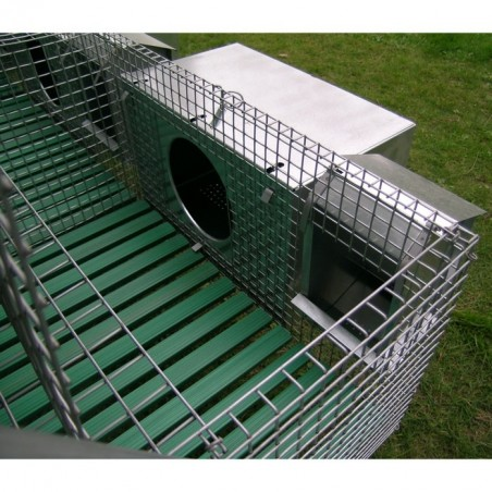 Nest and feeder on Rabbit Hutch for 3 Breed + 12 Fatten