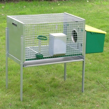 Rabbit Hutch for Male with nest