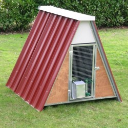 Mini Chicken Coop