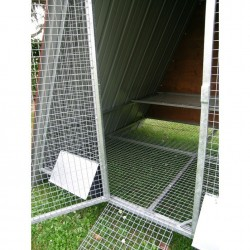 Internal of Raised Chicken Coop