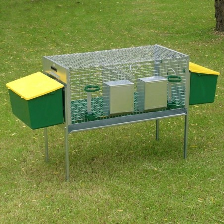 Rabbit Hutch for 2 Breed