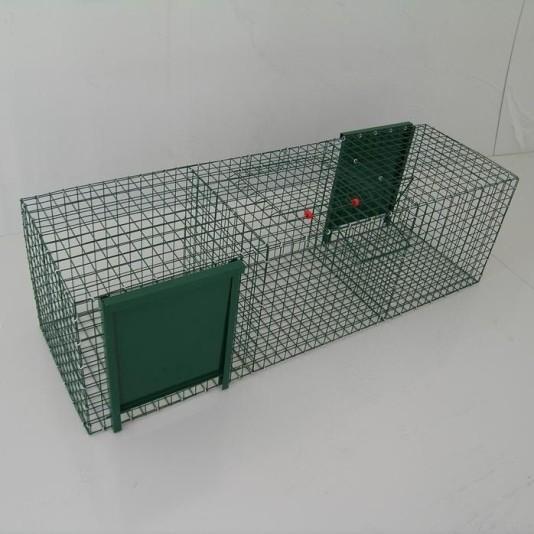 Trappola per corvidi