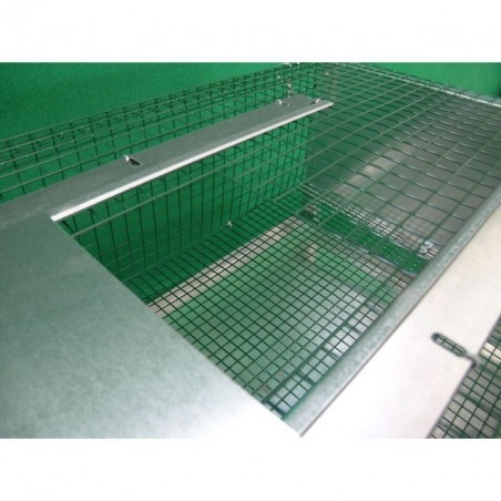 Cage for fattening quail