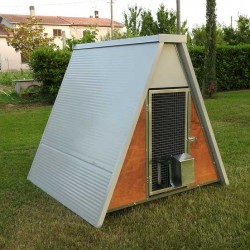 Insulated mini chicken coop